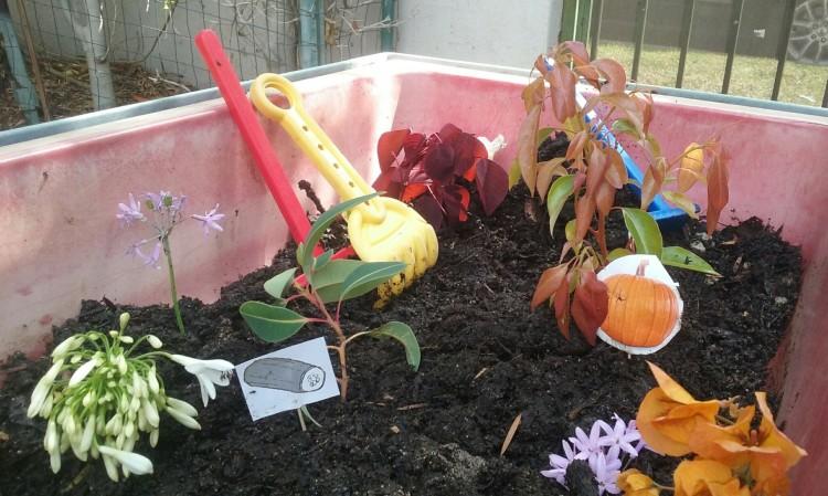 gardensens2