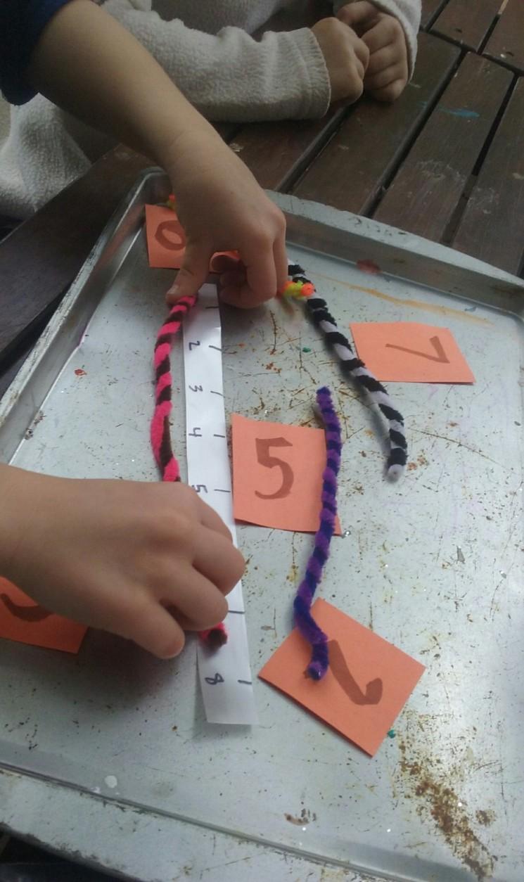 measureworm1