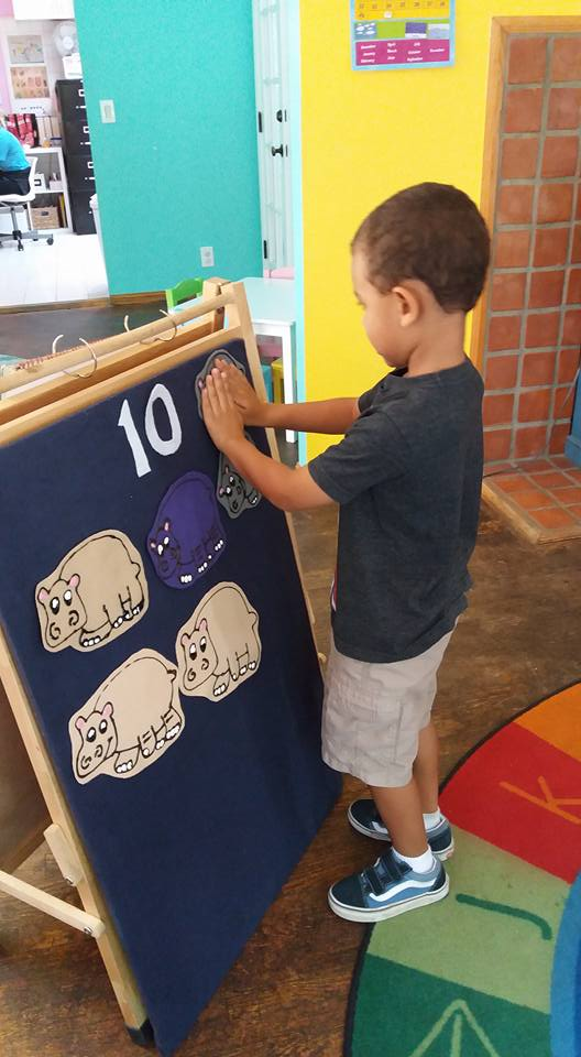 Hippo Counting 1